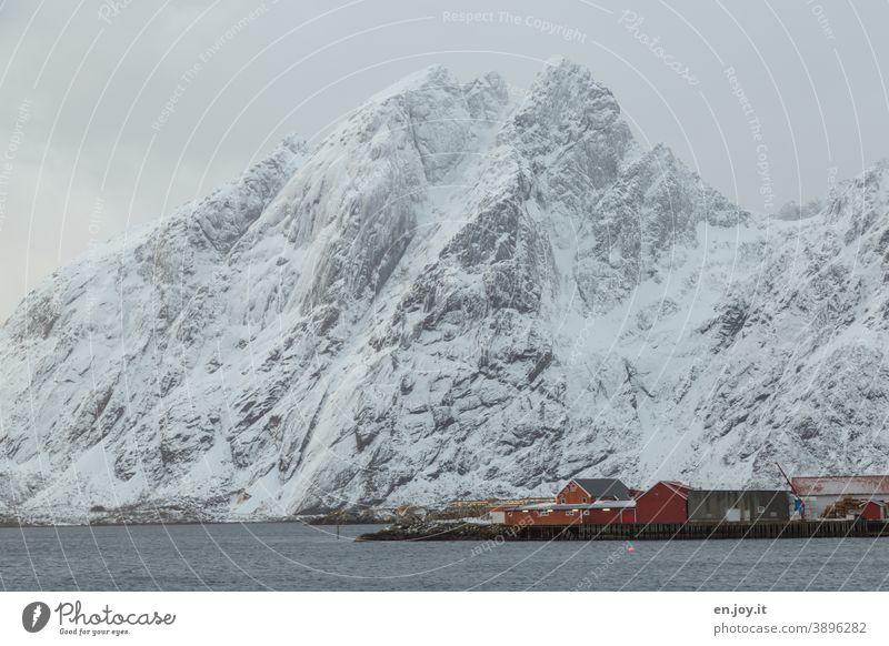 verschneiter Berg am Fjord mit kleinen roten Hütten im Vordergrund Sund Lofoten Norwegen Skandinavien Schnee Winter Rorbuer Hüttenferien Wasser Meer