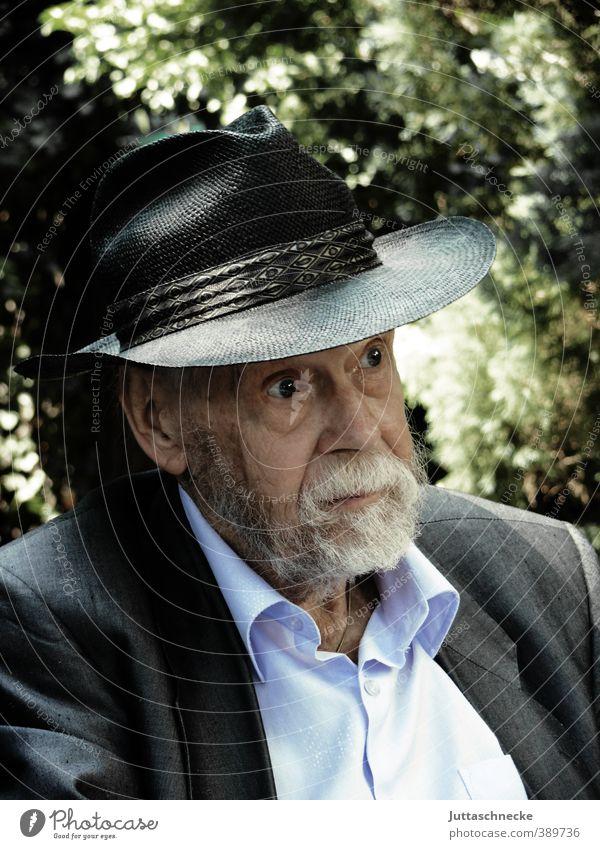 Onkel Herbert Mensch maskulin Männlicher Senior Mann Großvater Kopf Gesicht 1 60 und älter Hemd Jacke Hut grauhaarig Bart Vollbart alt beobachten Blick warten