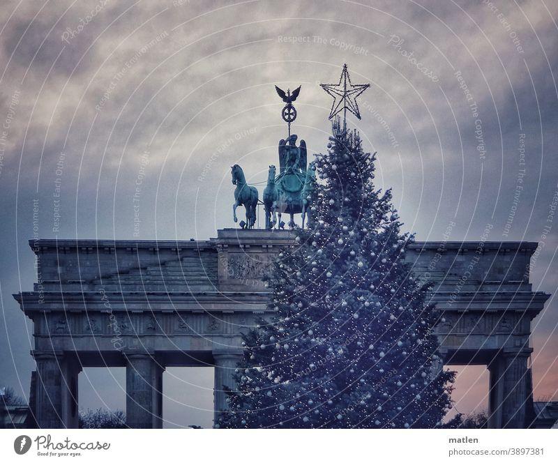 Quadriga folgt dem Stern Berlin Brandenburger Tor Hauptstadt Sehenswürdigkeit Berlin-Mitte Stern (Symbol) Weihnachtsbaum geschmückt Himmel Wolken Dämmerung