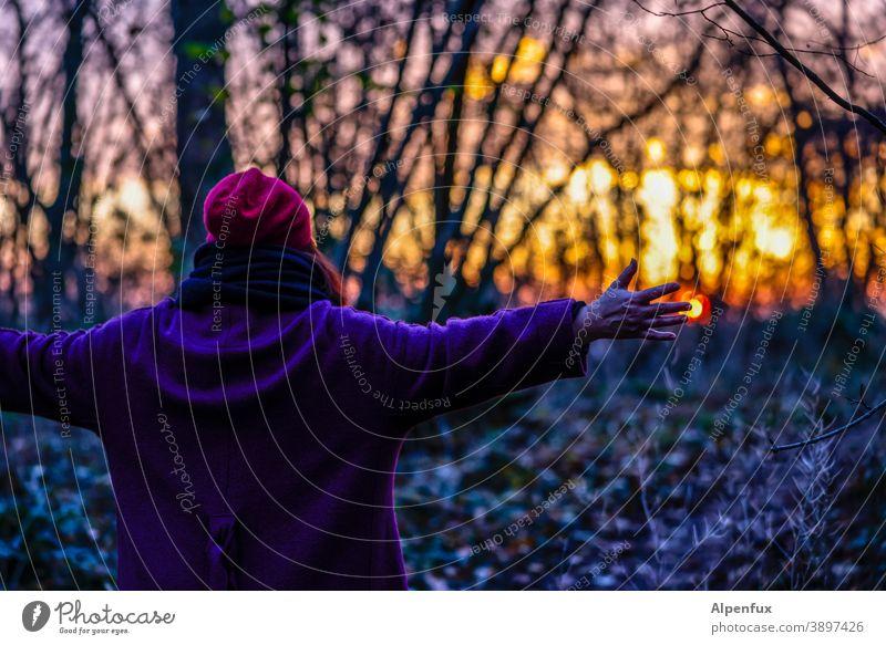 Touch the sun Sonnenuntergang Sonnenuntergangsstimmung Abend berühren berührend Sonnenuntergangshimmel Dämmerung Abenddämmerung Außenaufnahme