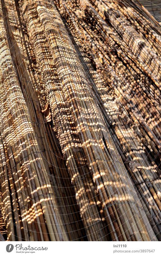 gelagerte Schilfrohrmatten mit interessantem Schattenspiel aufgerollt Muster Sichtschutz Sonnenschutz Beigetöne Garten Gartenzaun Windschutz Naturmaterial