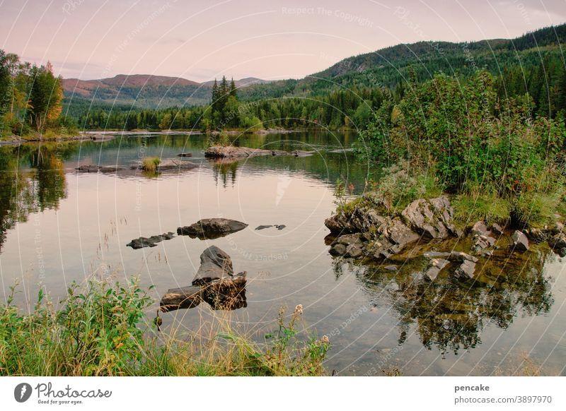 allein, aber nicht einsam Norwegen Landschaft Natur Fjord Felsen Reisen licht Wasser menschenleer Erholung Urlaub Skandinavien Ferien & Urlaub & Reisen