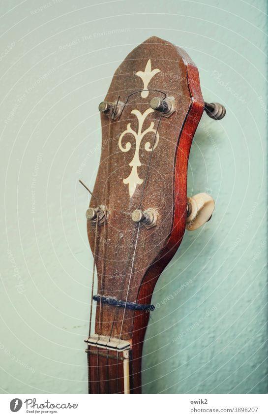 Verstaubtes Banjo Kopf Musikinstrument Zupfinstrument Kultur Freizeit & Hobby Kunst Klang Saiteninstrument musizieren Detailaufnahme Wirbel Sattel Bundstab Holz