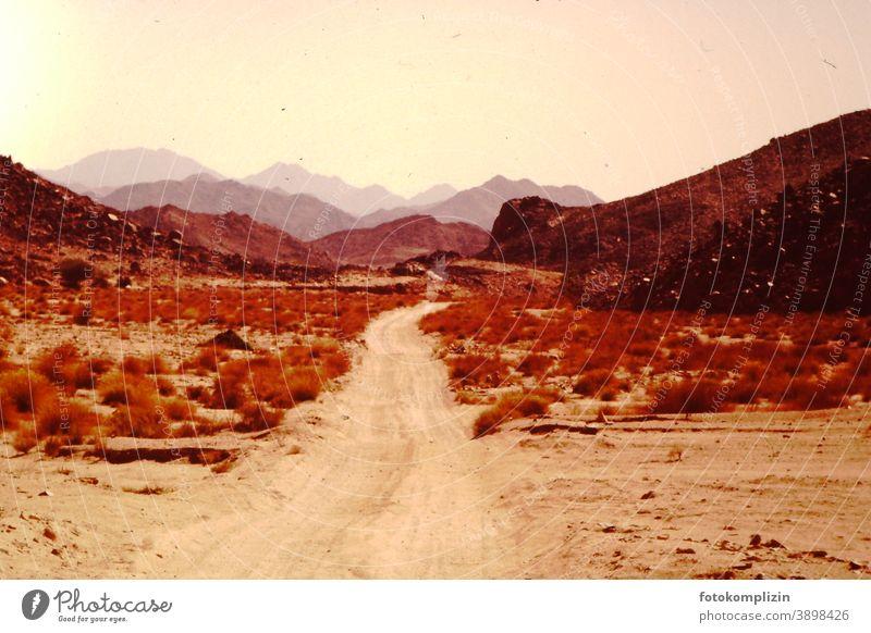 Wüstenweg Menschenleer Sand Natur Wüstenberge Sahara Ferne Landschaft im Freien Wege & Pfade warm Ruhe Nostalgie Stille Außenaufnahme sehnsucht Piste