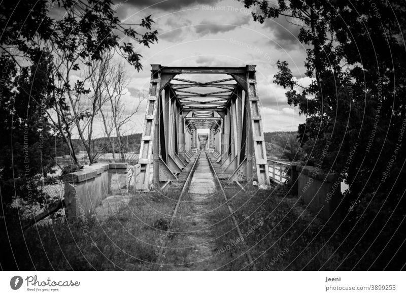Alte Europabrücke an der Oder in schwarzweiß | Verbindung Deutschland - Polen | Nachbarschaften Brücke Oderbruch Eisenbahnbrücke Brandenburg pommern Westpommern
