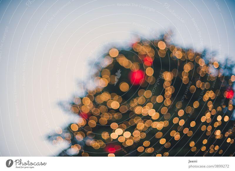 Von unten eingefangen | großer Weihnachtsbaum auf einem Marktplatz | verschwommen glitzert es gelb und rot | Bokeh aus tausenden Lichtern Weihnachtsmarkt