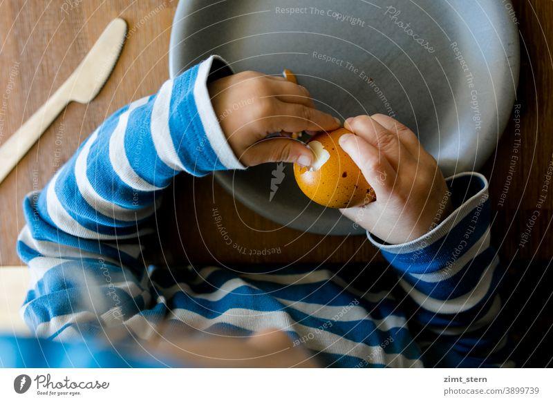Kind mit buntem Osterei Ostern Ei Komplementärfarbe komplementär gelb blau kind kindheit kleine Hände essen Frühstück bio öko nachhaltig mäkelig mehrfarbig