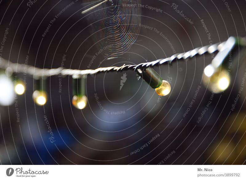 Lichterkette incl. Spinnennetz Glühbirne dunkel Lampe Beleuchtung Nacht Technik & Technologie Elektrizität Kabel Dämmerung Abend Dekoration & Verzierung