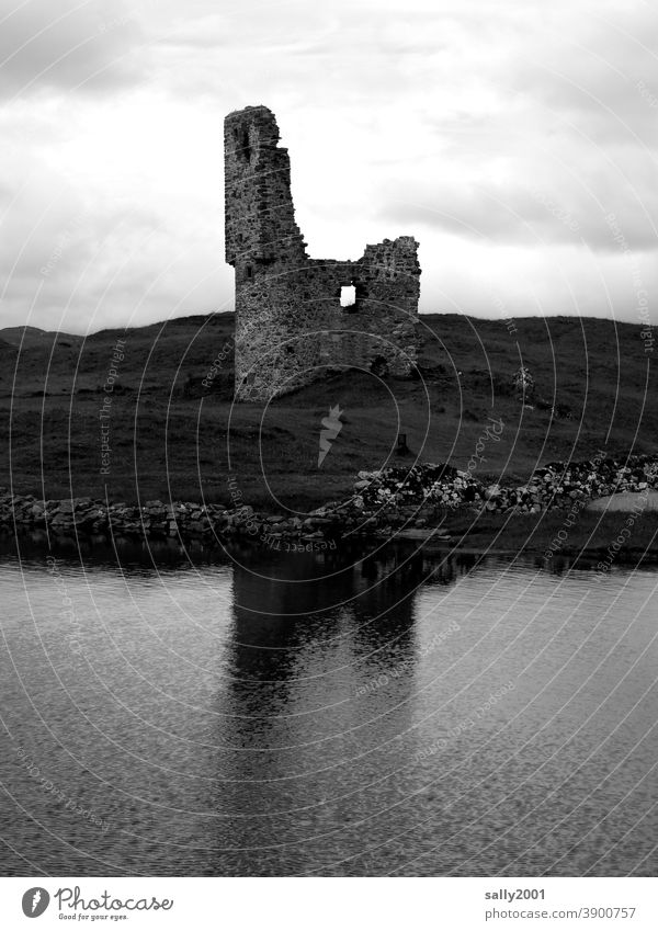 (Zeit-)Geschichte | schon länger unbewohnt... Ruine Burg Burgruine Burg oder Schloss historisch alt Architektur Historische Bauten Bauwerk Mauer Fassade Wand