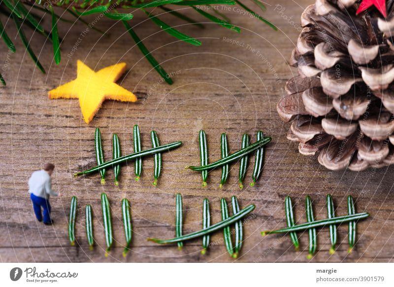 Weihnachten, 24. Dezember Heiligabend wie viele Tage sind es noch? Miniatur Miniwelten Stern Tannennadeln Tannenzweig Tannenzapfen Dekoration & Verzierung