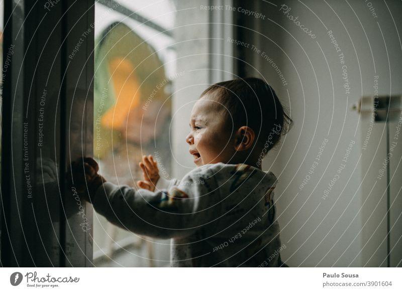 Kleinkind weint am Fenster Kleinkindheit Kind Kindheit zu Hause Quarantäne Kaukasier zu Hause bleiben heimwärts Lifestyle Familie & Verwandtschaft Coronavirus