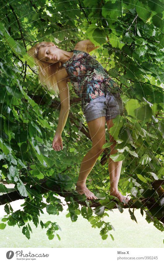 Hängend* Mensch feminin Frau Erwachsene 1 18-30 Jahre Jugendliche Sommer Baum Wald blond hängen Klettern Barfuß Baumkrone Ast Zweig baumeln Farbfoto mehrfarbig