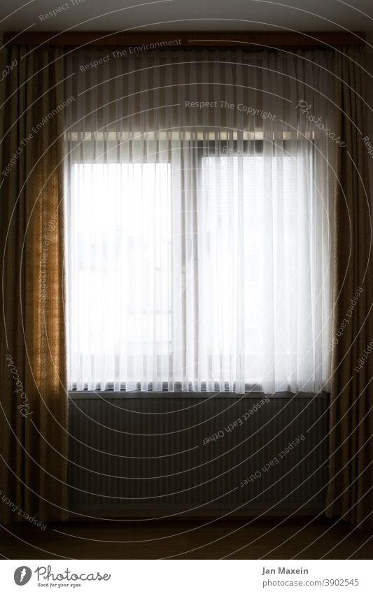 Fenster mit Gardinen Fensterscheibe Fensterblick Fensterbrett Fensterrahmen Heizung Heizkörper fußboden Wand Blick Nachbar innen draußen Wohnung Vorhang