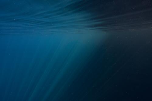 Sonnenstrahlen im Wasser Unterwasseraufnahme Lichterspiel blau tauchen Meer tief Ferien & Urlaub & Reisen