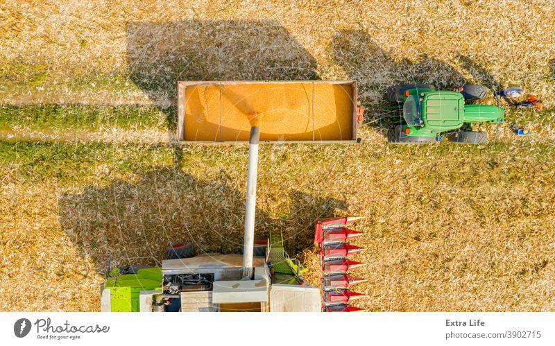 Obige Ansicht eines Mähdreschers, der frisch geerntetes Getreide zum Transport in einen Anhänger umlädt. oben Antenne landwirtschaftlich Ackerbau Ladung Müsli