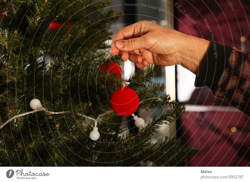 Schöne rote Kugeln werden am Weihnachtsbaum aufgehängt dekorierend heimwärts Tradition golden Hand Hintergrund Ball schön schwarz Bokeh hell feiern Feier