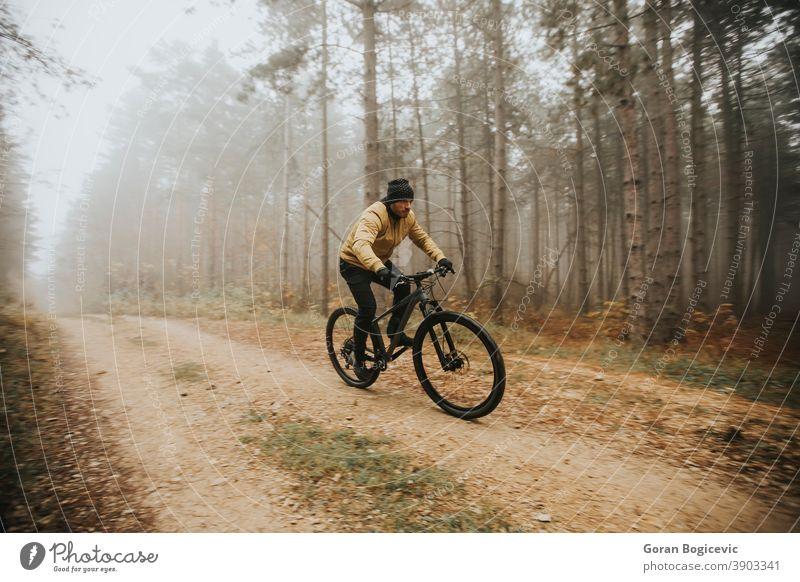 Junger Mann radelt durch den Herbstwald Wald Fahrrad Natur Zyklus Mitfahrgelegenheit Radfahrer Biker Radfahren Lifestyle im Freien Sport Übung Nachlauf