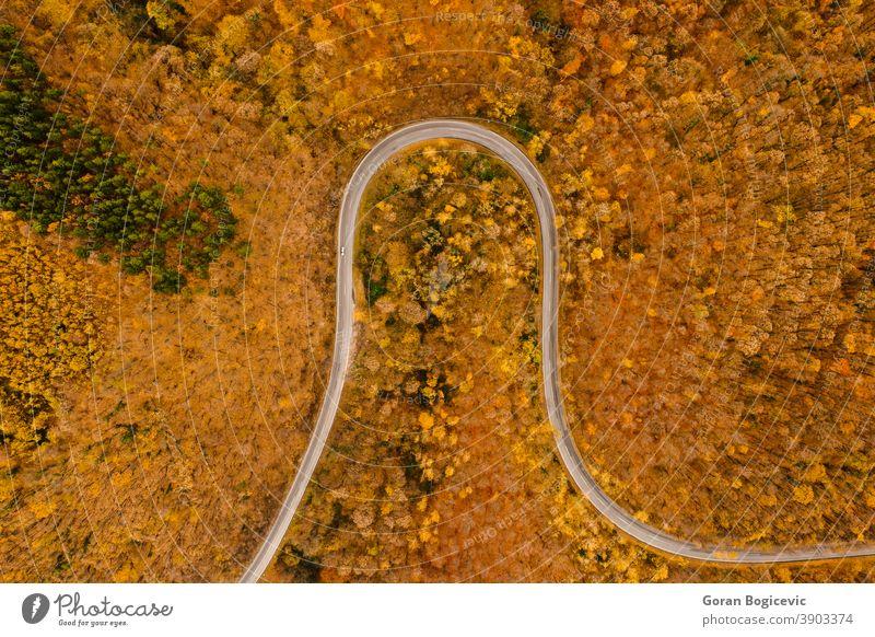Luftaufnahme der Herbst-Waldstraße Antenne im Freien schön Ansicht Natur Landschaft Bäume natürlich reisen Straße grün Dröhnen oben fallen Laubwerk Flug