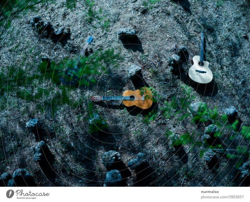 Play in the wooden Musik wald gitarren analog aukustisch seiten klang hobby grün nachhaltig hausmusik musiker strassenmusiker aukustikgitarre freiheit