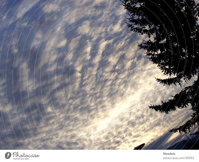 cloudy sky Sonnenuntergang Wolken Tanne Berge u. Gebirge