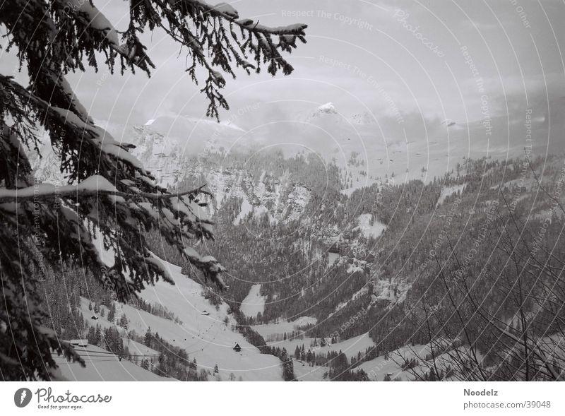 Dark n Dust Winter Nebel Hoch-Ybrig Berge u. Gebirge Schnee Schwarzweißfoto