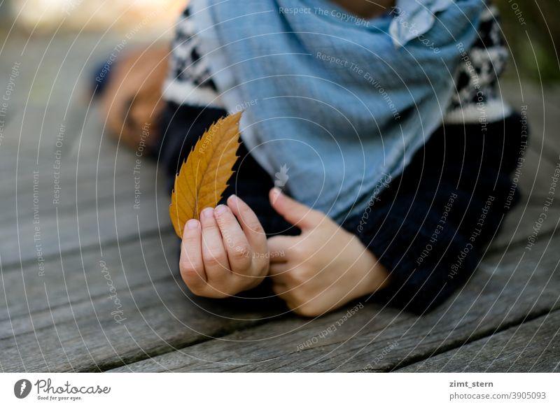 Kind mit Blatt im Herbst Herbstlaub Hände kleine Hände liegen draußen Kindheit Herbstgefühle Hand Kinderhände Natur sammeln Außenaufnahme