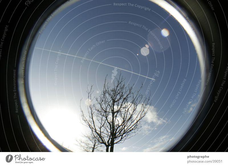 Baum, Himmel, Flugzeug Streifen Fischauge blau Kreis