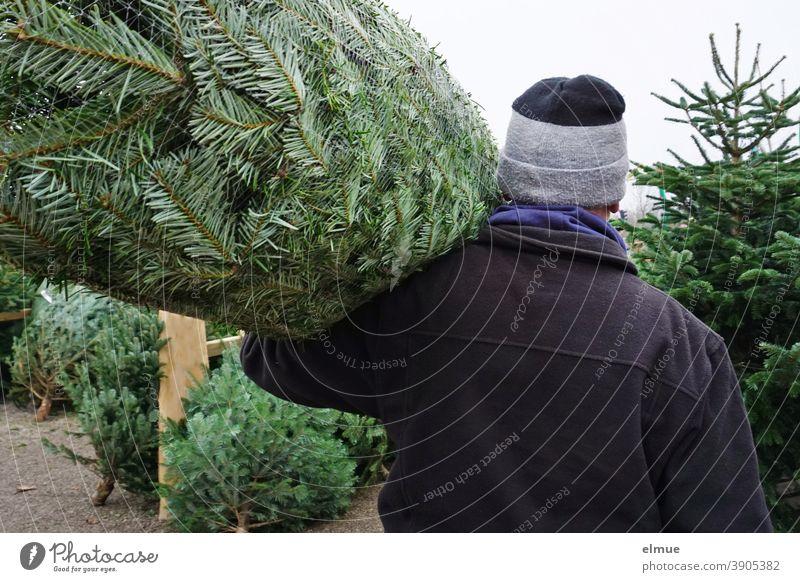 Ein Mann trägt zwischen gefällten und aufgestellten Tannen hindurch einen Weihnachtsbaum im Netz auf den Schultern und entfernt sich / systemrelevant / Weihnachtsbaumkauf