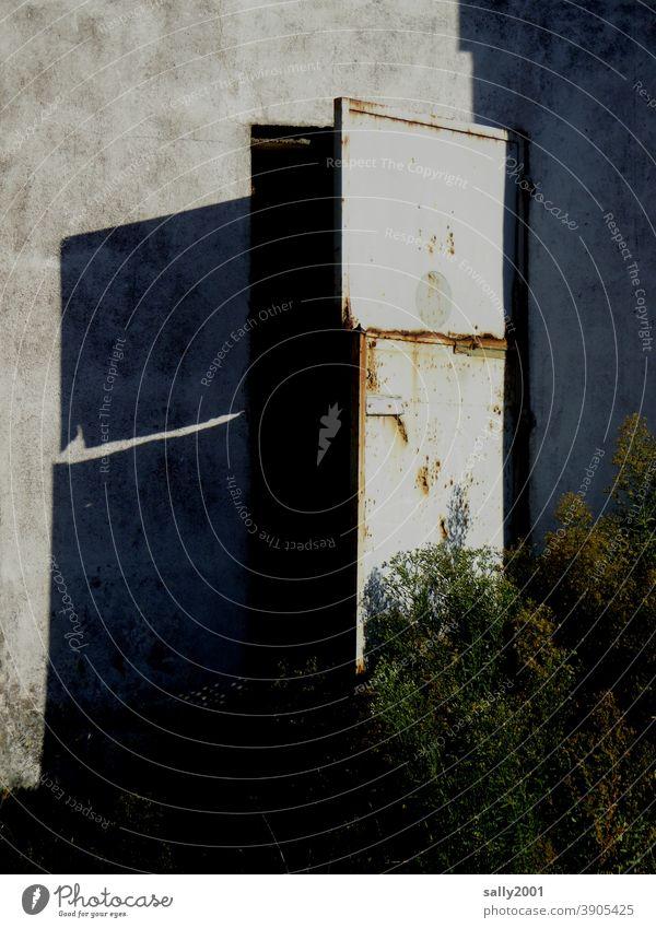 come in... Tür Tor alt Rost geheimnisvoll Krimi Busch Außenaufnahme Metall Vergänglichkeit Schatten kaputt offen halboffen verlassen Industrieanlage Lagerhalle