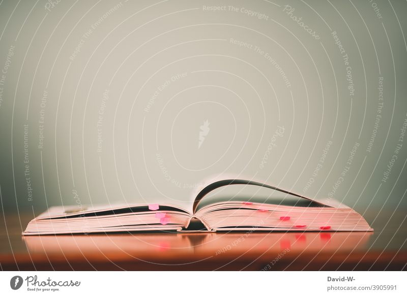 Vorbereitung und lernen - ein offenes Buch auf dem Tisch Studium Schule Hausaufgaben Bildung Wissen ausbildung Buchseite Prüfung & Examen