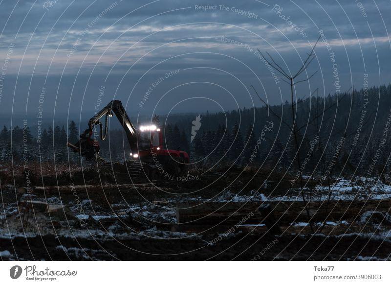 Winterharvester bei der Arbeit wald winterwald waldmaschine holzfällen licht borkenkäfer klimawandel