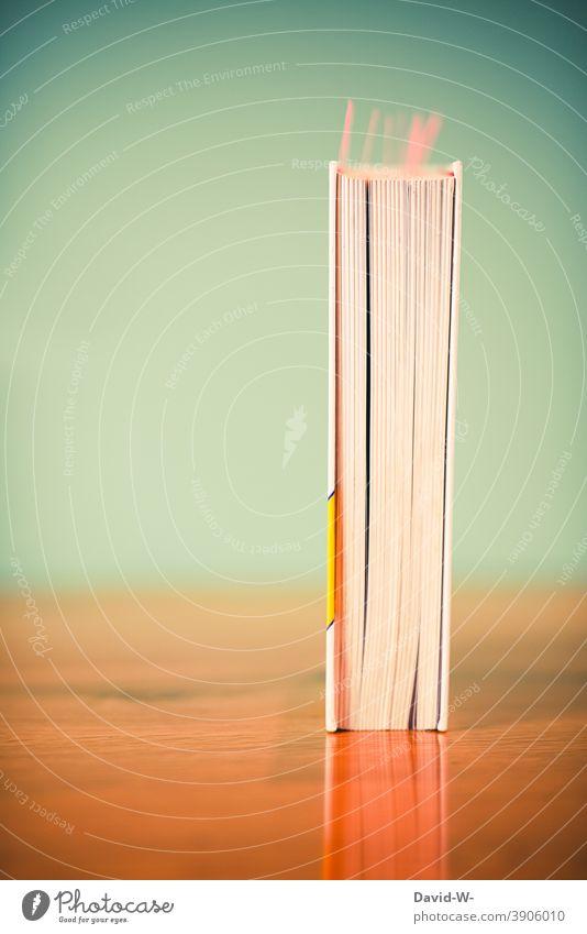 Buch auf einem Tisch lernen Studium Vorbereitung Schule Bildung lesen Wissen