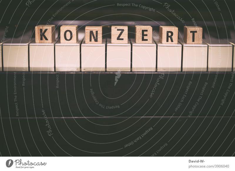 Klavierkonzert - Tasteninstrument Konzert Musik Kultur Wort Klassik Musikinstrument Musiker