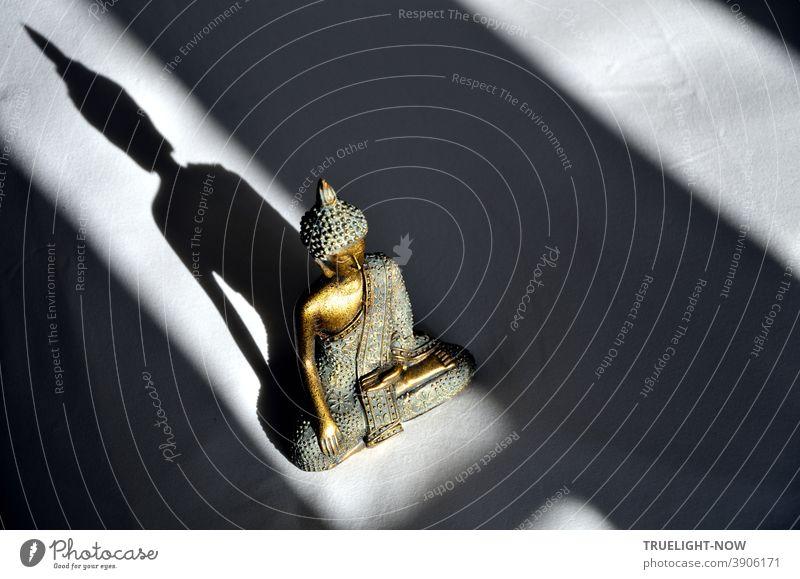 Auch von oben herab betrachtet macht Little Buddha im Spiel von  Sonnenlicht und Schatten einen guten Eindruck Skulptur Gold Bronze türkis leuchten glänzen