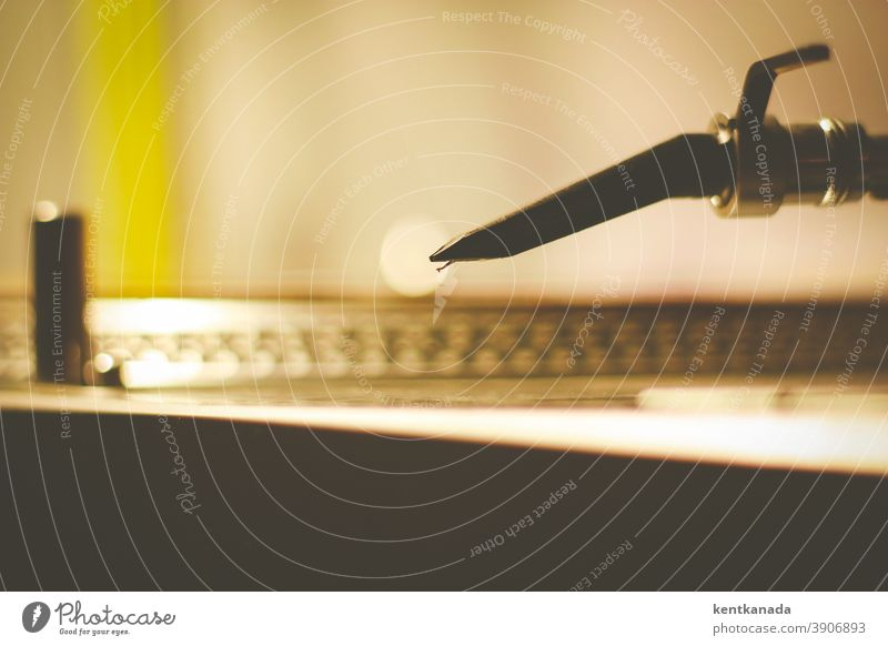 Nahaufnahme einer Drehtisch-Nadel Textfreiraum oben Unterhaltungselektronik Farbfoto Club Medien Innenaufnahme hören Vinyl heimwärts Plattenteller Aufzeichnen