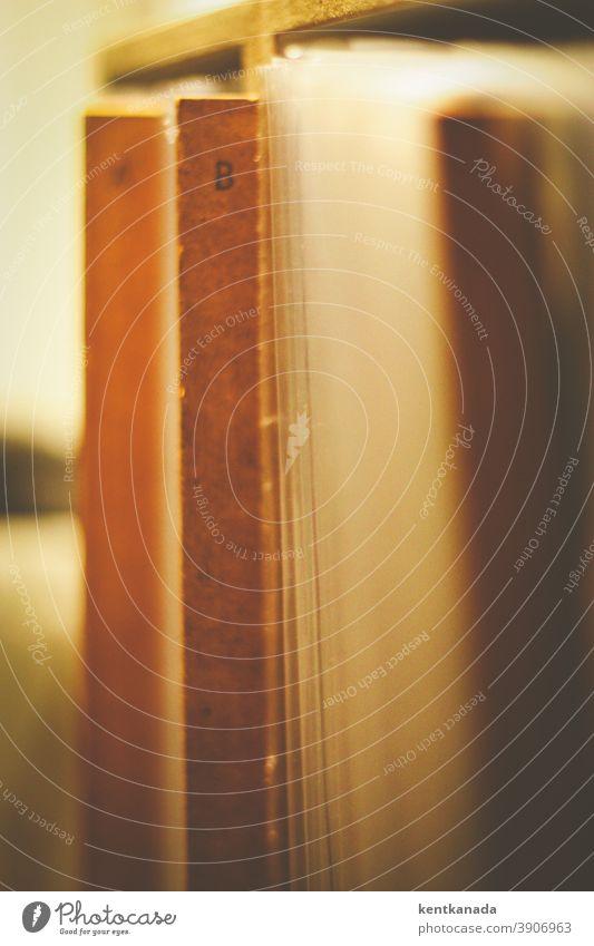Alphabetisch geordnete Vinyl-Schallplatten home coronavirus Musik Musik hören Regal alphabetisch register Buchstaben record Plattenteller Plattenspieler Sound