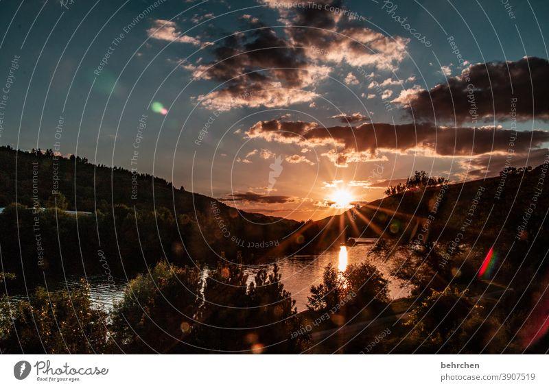 sonnenlichter moselabend Sonnenstern Moseltal Mosel (Weinbaugebiet) Flussufer Freiheit Fernweh Wasser Reflexion & Spiegelung Weinberg Berge u. Gebirge