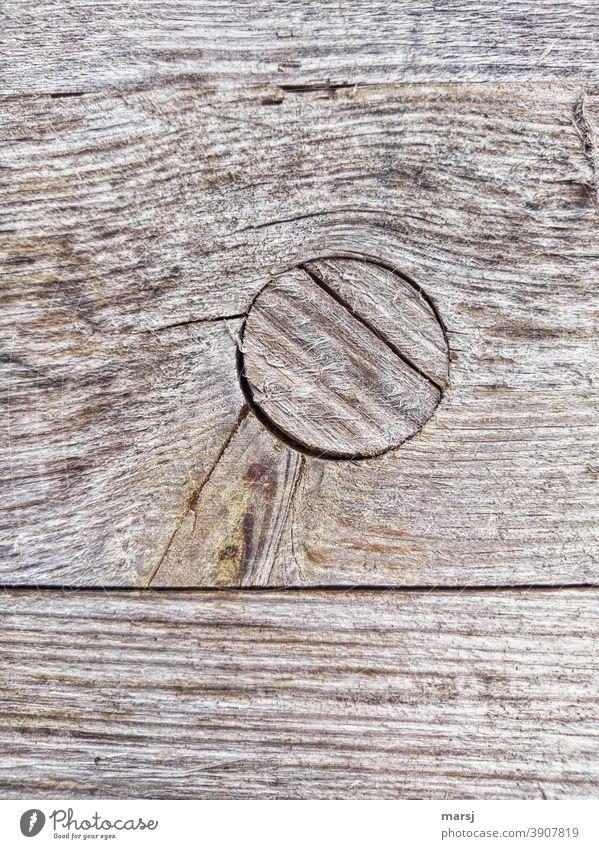Verdrehter Holzzapfen in rissiger Holzplatte. Verwittert und faserig. Holzverbindung verwittert alt Flickwerk Reparatur Holzverzahnung abgelebt Maserung