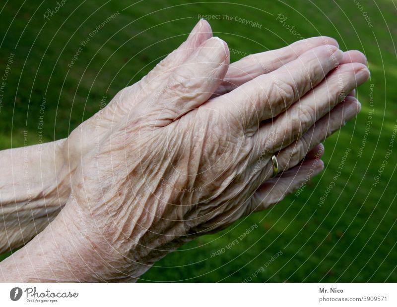 Zeitgeschichte I erlebt Hände alt Senior Finger Weiblicher Senior Großmutter 60 und älter Leben falten betende hände Körperpflege Gebet Gefühle Hautfalten