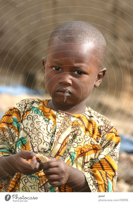 David Kind Ferien & Urlaub & Reisen Farbe Afrika Safari Sambia