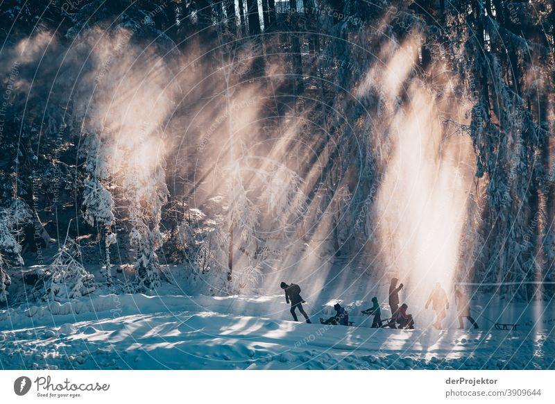 Menschen mit Schlitten im Gegenlicht im Harz Joerg Farys Nationalpark Naturschutz Niedersachsen Winter harz naturerlebnis naturschutzgebiet naturwunder