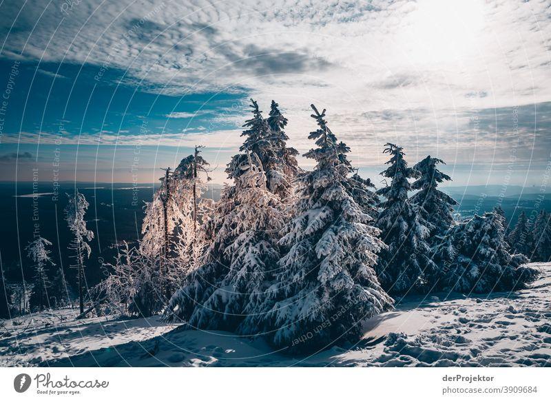Schneebedeckte Nadelbäume mit Sonne im Harz Joerg Farys Nationalpark Naturschutz Niedersachsen Winter harz naturerlebnis naturschutzgebiet naturwunder
