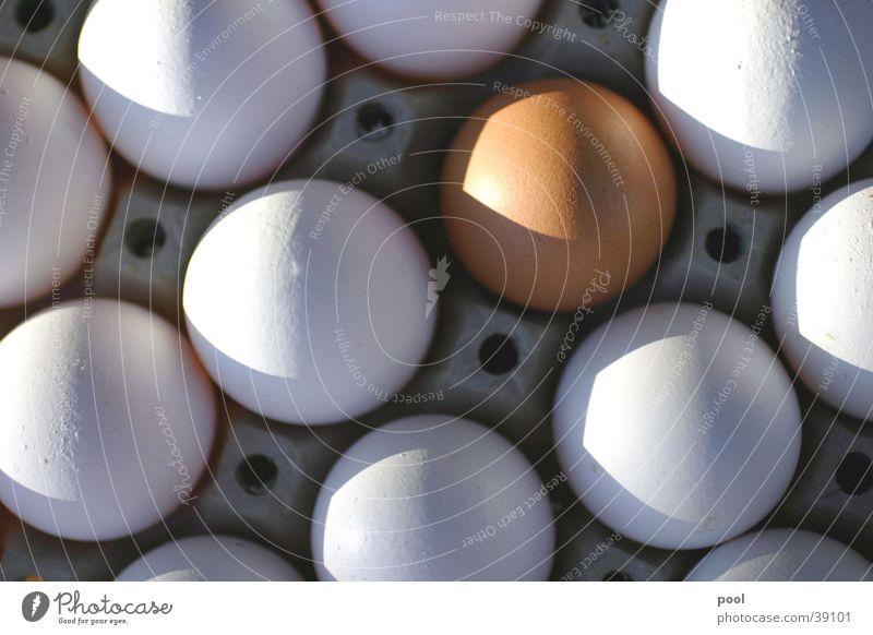 Ei-Ei-Ei Lebensmittel Eierkarton Gegenteil Farbenspiel Schattenspiel braun weiß Hotel Morgen Symetrie Ernährung Natur