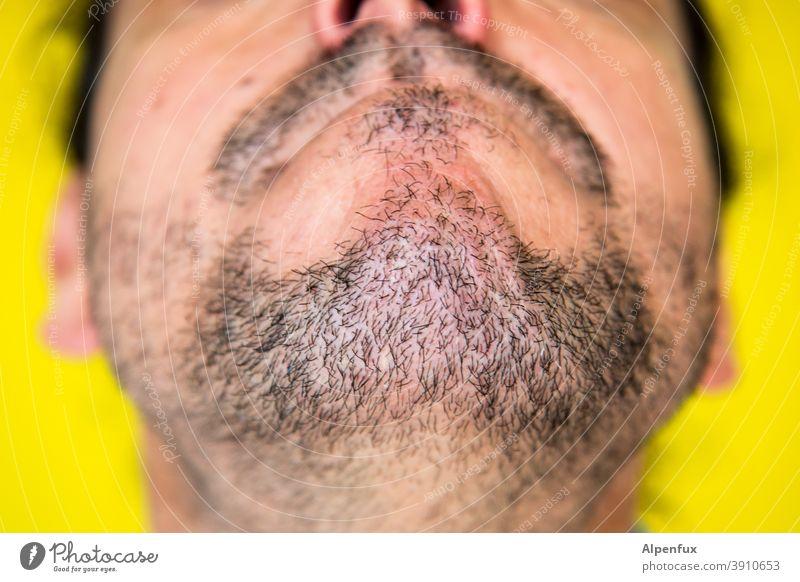 Kaukasisches Kinn Bart Barthaare Bartstoppel Nahaufnahme Mensch Mann Mund maskulin Gesicht Erwachsene Dreitagebart Haare & Frisuren Farbfoto Nase Detailaufnahme