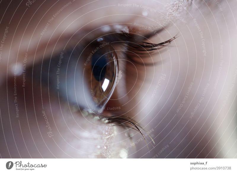 Seitenansicht des braunen Auges, offenes funkelndes Auge mit Blick nach vorne, Nahaufnahme abschließen nass Wimpern Ansicht in Erwartung sehen Fokus anschauend