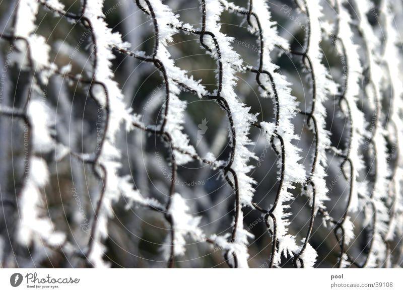 Maschendrahtzaun im Raureif Winter kalt Schnee Eis Zaun Kristallstrukturen Raureif Schlaufe Maschendrahtzaun Weidezaun
