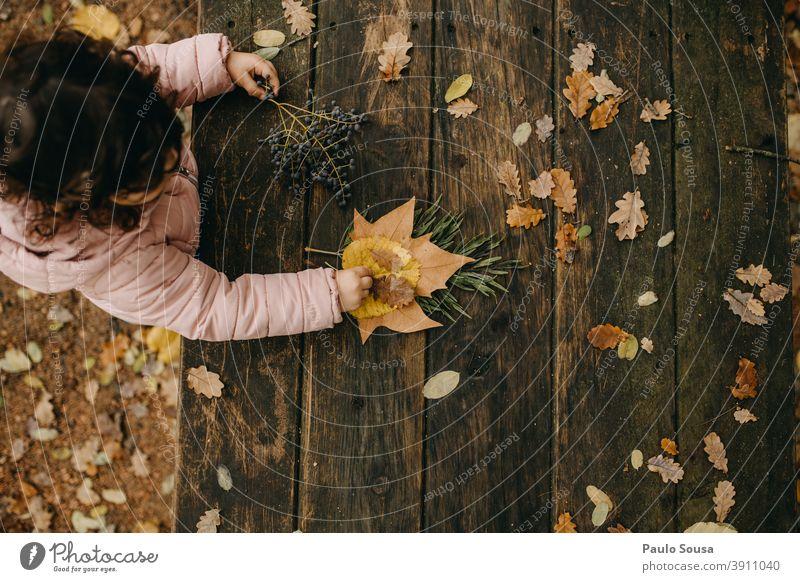 Mit Herbstblättern spielendes Kind herbstlich Herbstlaub Herbstfärbung fallen Winter Natur Laubwerk Herbstwald Blätter Tag Farbfoto Blatt Umwelt Außenaufnahme