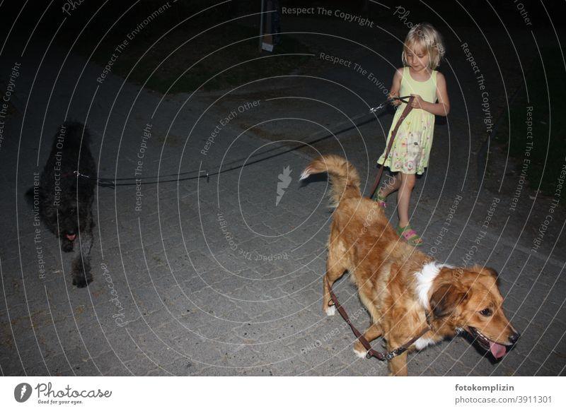 kleine Hundeführerin Mädchen Kindererziehung Hundeerziehung Hundeleine Haustier Tierliebe führen Gassi gehen Spaziergang Freundschaft Hundeliebe Zusammensein