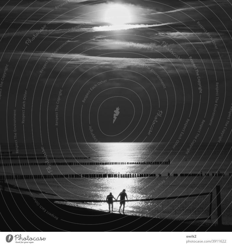 Komm jetzt! Strand Ostsee Wasser Sonnenlicht Reflexion & Spiegelung Lichterscheinung Silhouette Menschen Paar zwei Mann und Frau Spaziergang Hand in Hand