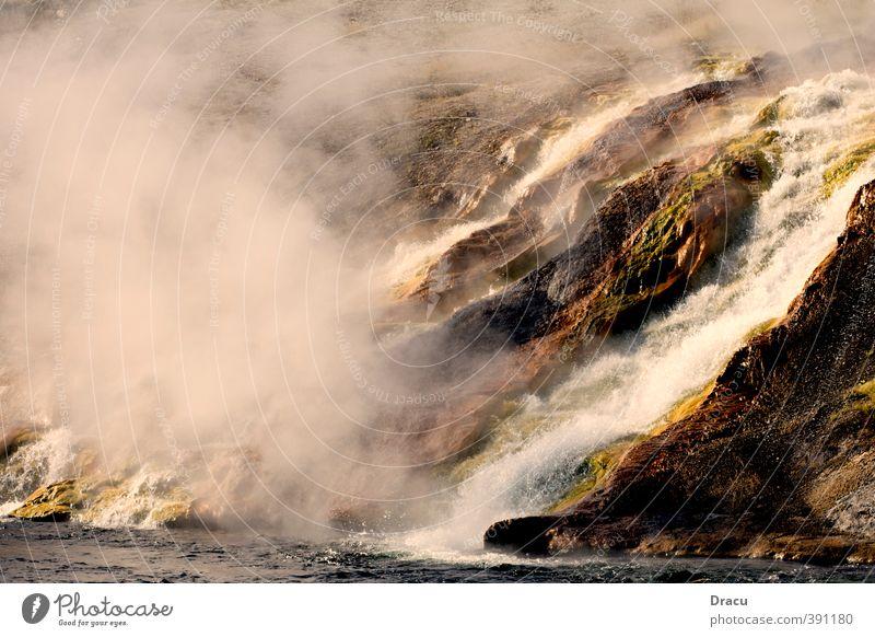 Heisser Wasserfall Natur Pflanze Urelemente Wärme Urwald Felsen Flussufer Fjord Heisse Quellen Ferien & Urlaub & Reisen authentisch fantastisch heiß wild